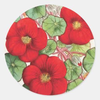 """""""Nasturtium"""" Vintage Flower Illustration Classic Round Sticker"""