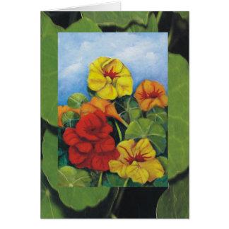 Nasturtiums Greeting Card
