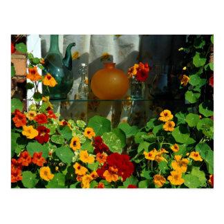 Nasturtiums with glass bottles postcard