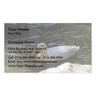 Natación blanca linda del pato de Pekin en la char Tarjeta De Negocio