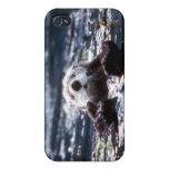 Natación de la nutria de mar iPhone 4 carcasa