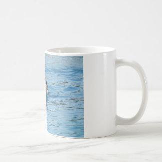 Natación de la orca taza de café
