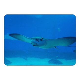 Natación de la pastinaca debajo del agua