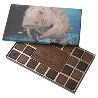Natación de la vaca de mar caja de bombones variados con 45 piezas
