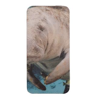 Natación de la vaca de mar funda para iPhone 5