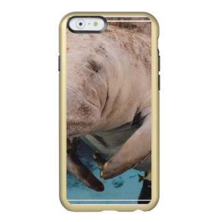 Natación de la vaca de mar funda para iPhone 6 plus incipio feather shine