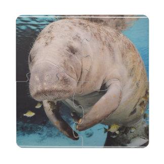 Natación de la vaca de mar posavasos de puzzle