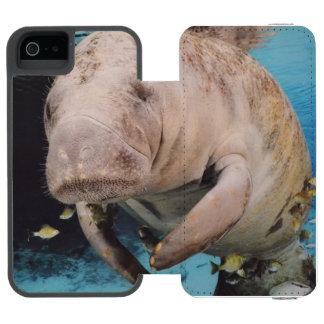 Natación de la vaca de mar funda billetera para iPhone 5 watson