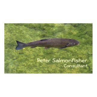 Natación de los pescados del río tarjetas de visita