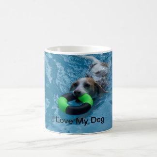 Natación del beagle en taza de la piscina