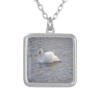 Natación del cisne mudo en el lago joyerías