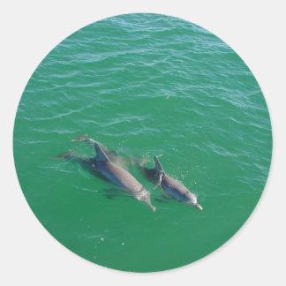 Natación del delfín de la madre con sus dos pegatina redonda