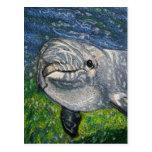 Natación del delfín debajo del agua: Luz del sol D Tarjeta Postal