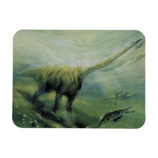 Natación del dinosaurio del Brachiosaurus del vint Imanes De Vinilo