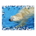 Natación del oso polar tarjeta postal