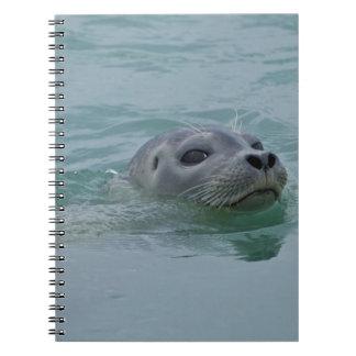 Natación del sello de puerto en el lago glacial Jo Libro De Apuntes Con Espiral