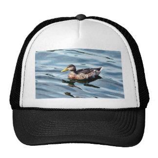Natación femenina del pato del pato silvestre gorra