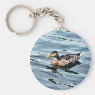 Natación femenina del pato del pato silvestre llaveros