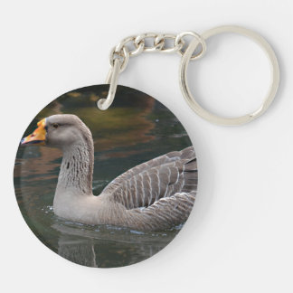 natación gris del ganso a través de la imagen del  llaveros