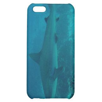 Natación gris del tiburón del filón