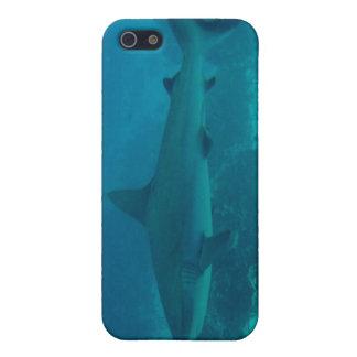 Natación gris del tiburón del filón iPhone 5 funda