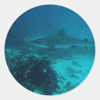 Natación gris del tiburón del filón pegatina redonda