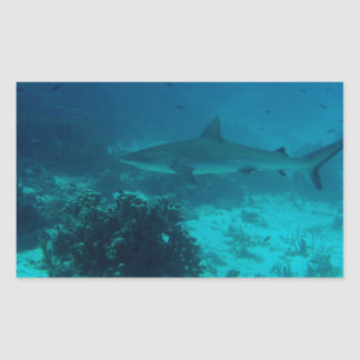 Natación gris del tiburón del filón rectangular altavoces