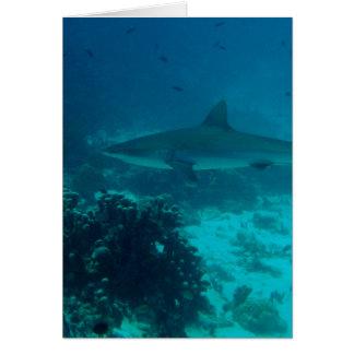 Natación gris del tiburón del filón tarjeta de felicitación