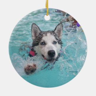 Natación linda del perro en piscina ornamentos para reyes magos