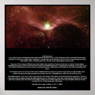Natal Microcosm Poster
