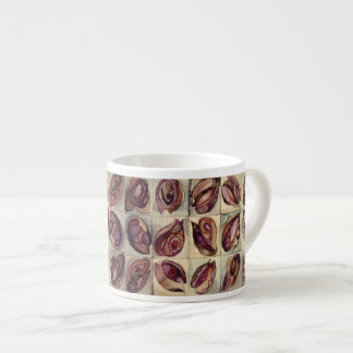 natal shells 2 espresso cup