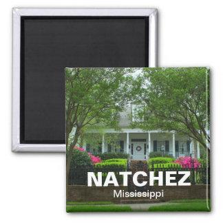 Natchez, Mississippi Antebellum vacation souvenir Magnets