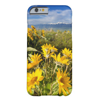 National Bison Range Barely There iPhone 6 Case