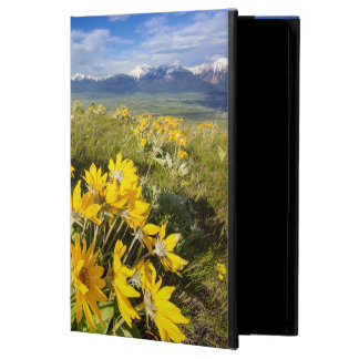 National Bison Range iPad Air Covers