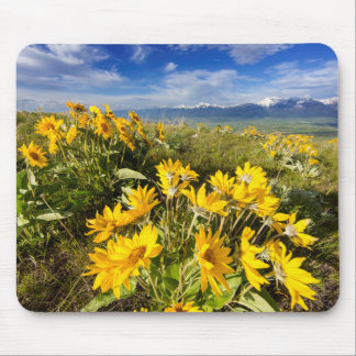 National Bison Range Mouse Pad