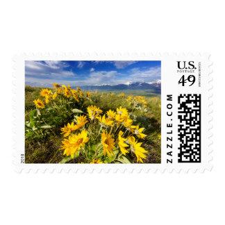 National Bison Range Postage