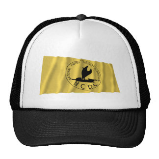 National Capitol District Waving Flag Trucker Hat
