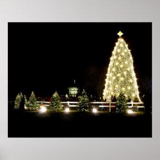 National Christmas Tree Poster