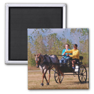 national drive in 2010 2 inch square magnet
