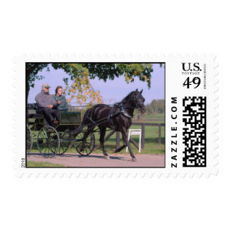 National Drive Sunday 2009 267 Postage Stamps