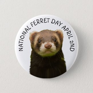 National Ferret Day April 2nd Holiday Button