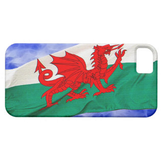 National Flag of Wales Patriotic Phone Case