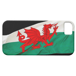 National Flag of Wales, The Red Dragon Patriotic iPhone SE/5/5s Case