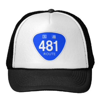 National highway 481 line - national highway sign trucker hat