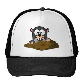 National Mole Day Hats