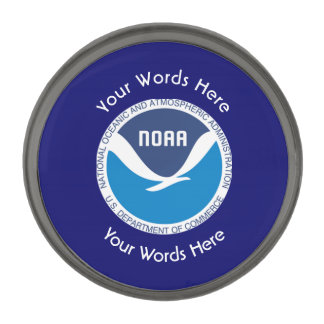 National Oceanic and Atmospheric Administration Gunmetal Finish Lapel Pin