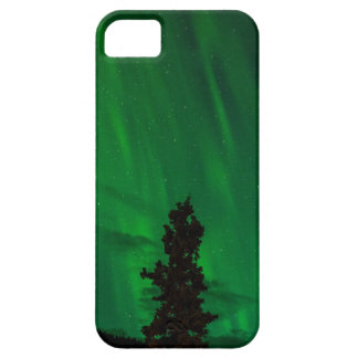 National Park and Preserve iPhone / iPad case