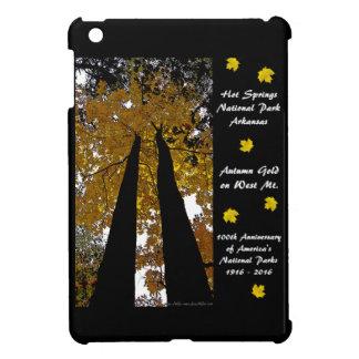 National Park Centennial Hot Springs Autumn Gold iPad Mini Case
