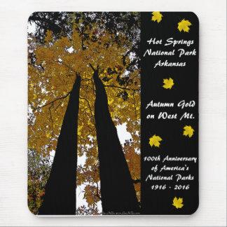 National Park Centennial Hot Springs Autumn Gold Mouse Pad