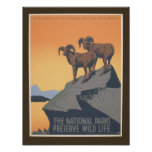 National Park - Preserve Wildlife - Vintage Poster